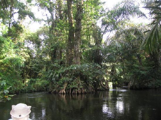 La Reserva Biológica Indio Maíz